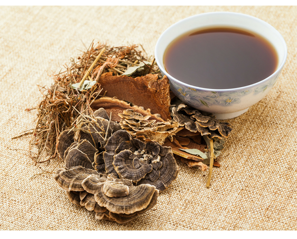 A Newbie's Guide to Traditional Chinese Medicine